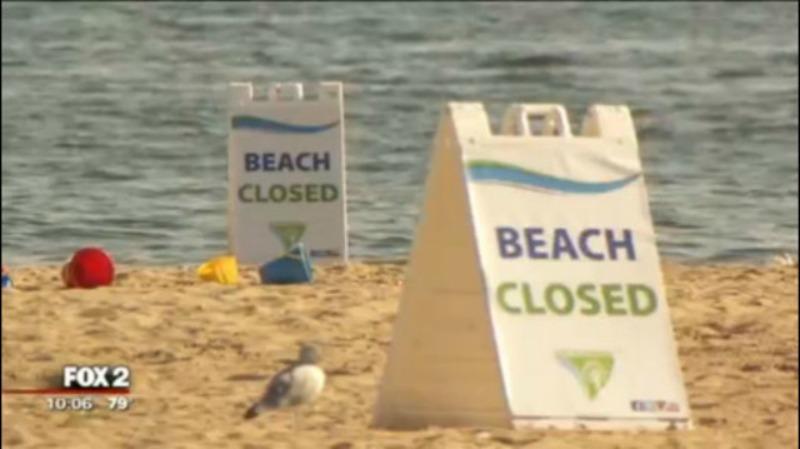 Lake St. Clair Metro Park closed for 3rd time this month for E. coli levels