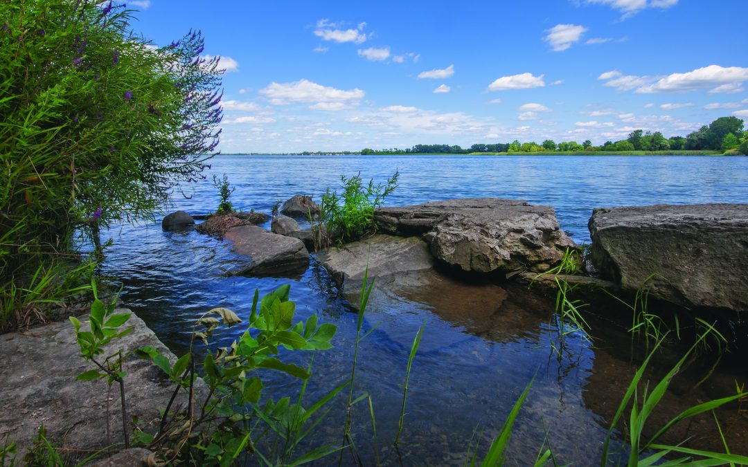 Healthy rivers, lakes attract investment to state