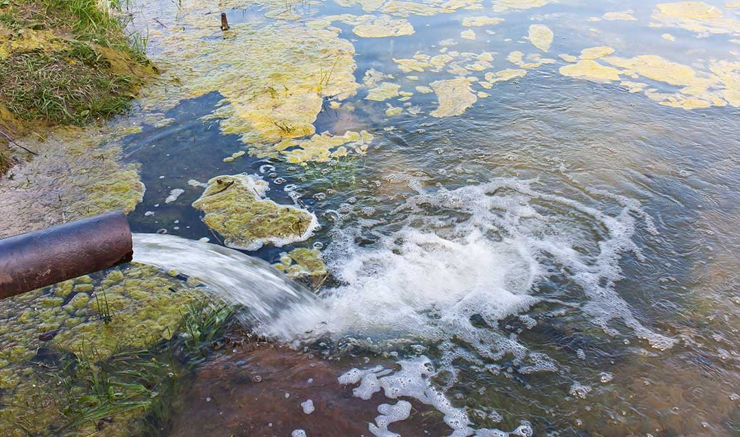 Problem led to partially treated sewage in Michigan river